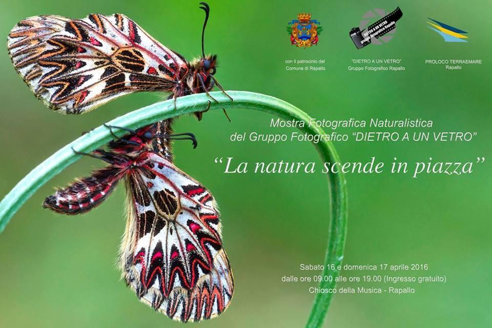 La Natura Scende in Piazza: sabato 16 e domenica 17 aprile la mostra fotografica del gruppo Dietro A Un Vetro